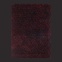 Hand Tufted Rug M0060